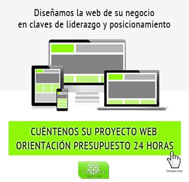 Diseñamos la web de su negocio